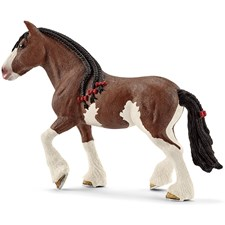 Clydesdale Stute