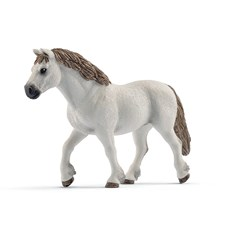 Welsh-Pony Stute