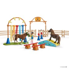 Pony Agility Training